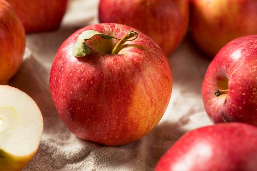 Raw Red Organic Gala Apples