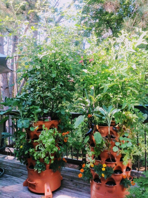 two productive garden tower gardens vegetables