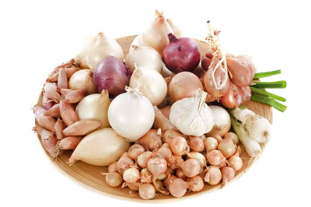 varieties-of-onions