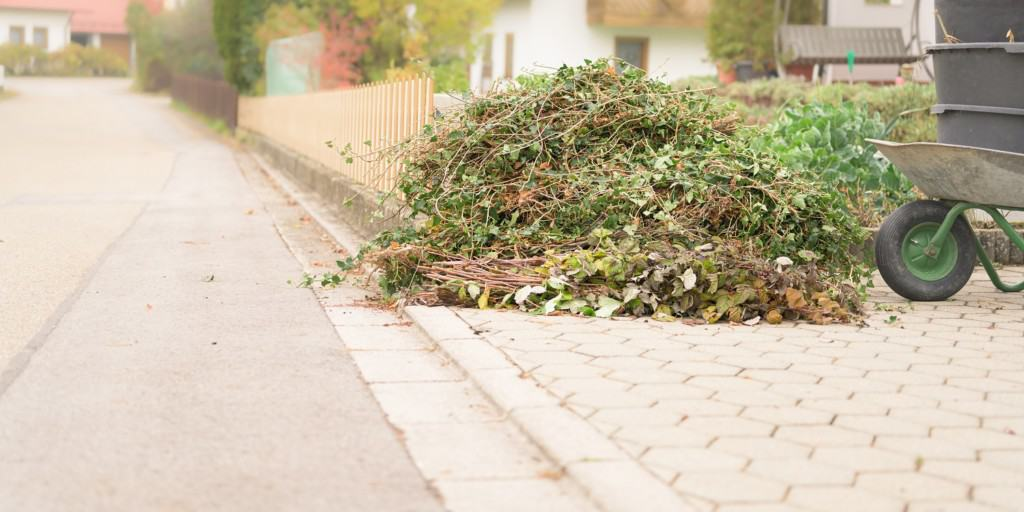 garden,waste,from,cutting,shrubs,and,plants.,standing,by,the