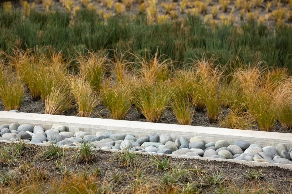 drainage ditch attractive landscaping