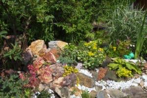 gorgeous rock garden rockery
